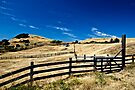 Straw Countryside by Andrew Simoni