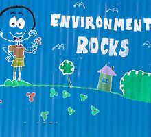 Environment Rocks by Walter Quirtmair