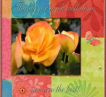 Orange Begonia / Thanks for a job well done you are the best  by toots