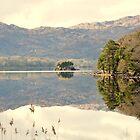 Calm Lake Muckross Killarney by amuigh-anseo