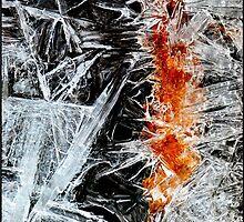 Crystallized by Nancy Barrett