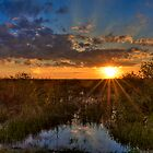 Sunset over the Everglades by njordphoto