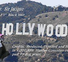 Bio: Sir Jacque by Joni  Rae
