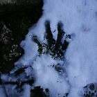 Hand Print. by Tom Francis