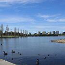 Albert Park Lake, Melbourne by BronReid