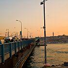 Dawn in Istanbul by Cammi