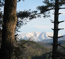 Smoky Mountains - Thunderhead View by JeffeeArt4u