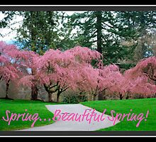 Spring...Beautiful...Spring by Carol Clifford