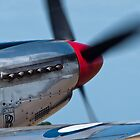P51 Mustang by wolfcat