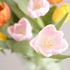 Tulips bouquet by dhmig