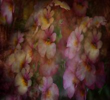 Floral Dreams by Linda Cutche