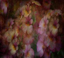 Floral Dreams by Linda Cutche