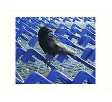 firm purchase (raven upon shopping trolleys) Art Print