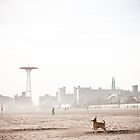 Coney Island by melissajmurphy