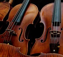 Modern Violin Collection - Stradivarius & friends by Nick Bland