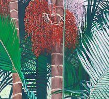 Bangalow Palms by Lisa Martin