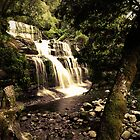 Liffey Falls by highlux