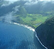 Waipio Valley, Big Island Hawaii & video by Joni  Rae