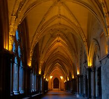 Westminster Cloister by EvergreenImp