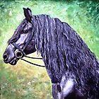Frissian Stallion by Joseph Barbara