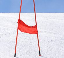 Slalom by Walter Quirtmair