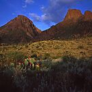 Chisos Mountains & Desert  by Mike Norton
