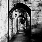 Through the eye of a tunnel by carrieH