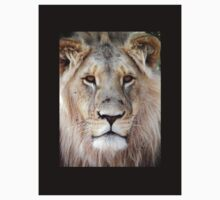 LION by thula