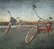 Cruisers by Laurie Search