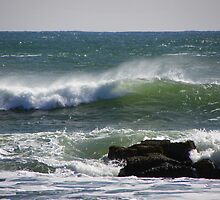 Wind Blown Waves by MaryinMaine