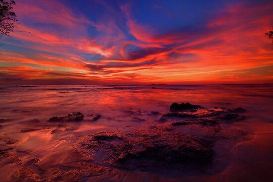 Pink Skyline by Trevor Murphy