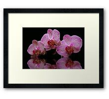 Soft and Sensual Framed Print