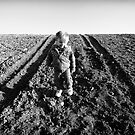 Little Boy, Big Tracks by Bob Larson