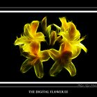 Digital Flower (III) by vitocork