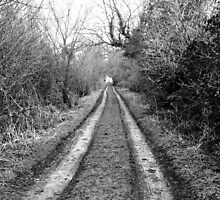 that road that never ends by Charlie Pallett