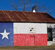 Texas Paint Job by Richard McIntyre