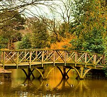Bridge over untroubled waters by Paul Reay