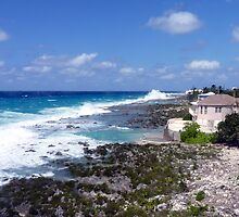 Lighthouse Point, North West Coast, Grand Cayman, Caribbean by Geetha Alagirisamy