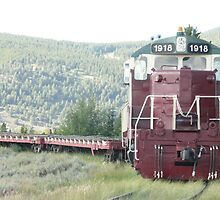 Old Train Engine at Leadville, Colorado. by Mywildscapepics