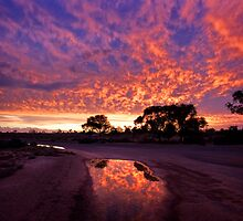 Puddle Sunset - Lake Mungo by Hans Kawitzki