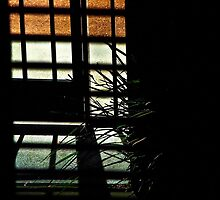 View through a wooden venetian blind #1 by Ivan Kemp