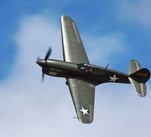 P-40F by Stephen McMillan