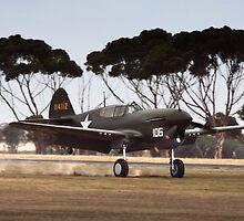 P-40F Landing by Stephen McMillan