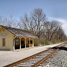 Cuyahoga Valley Scenic Railroad by Monnie Ryan