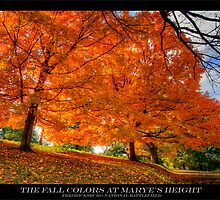 The Fall Colors in Fredericksburg by capturedjourney