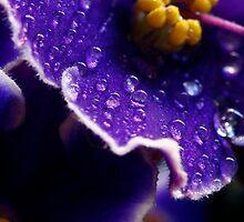 Tenderness by TaniaLosada