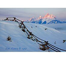 Running Buck & Rail, First Light on the Grand Photographic Print