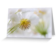 House Lime Greeting Card