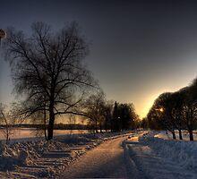 Winter Moods I by Petri Rautiainen