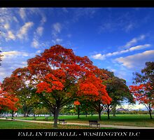 Fall in the Mall - Washington DC by capturedjourney